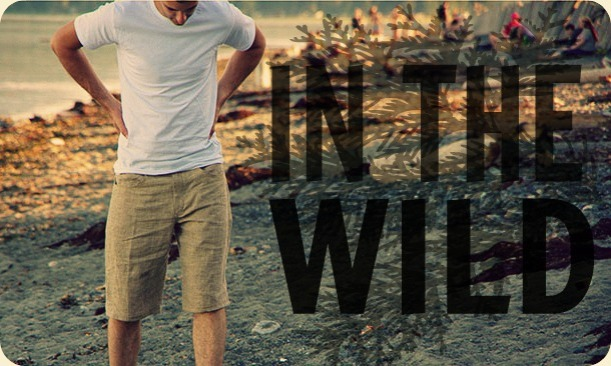 In the wild banner - large
