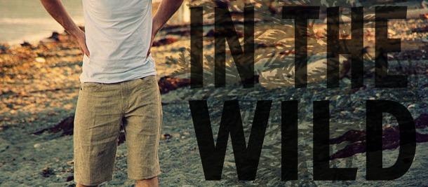 In the wild banner - medium
