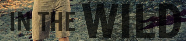 In the wild banner - small